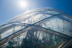 Greenhouse in the Botanic Garden, University of Aarhus C.F. Møller