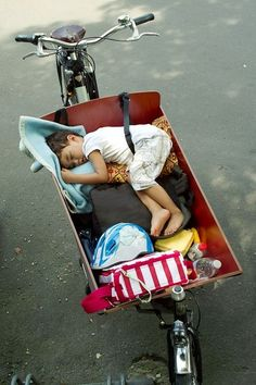 Asleep in the bakfiets - #Netherlands #bicycles