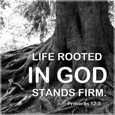 Full Context at Breakfast Bible Bytes – A Moment with Our Creator Be Rooted In The Word HTTP://WWW.FACEBOOK.COM/BREAKFASTBIBLEBYTES