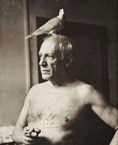 Picasso avec une colombe, Paris 1945, James Lord