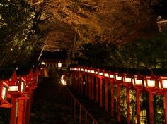 "This is japanese beautiful shrine""Kifune"" in Kyoto!"
