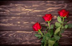 Wallpaper Desktop Laptop, Wallpaper Pc, Garden Wagon, Garden Bugs, Garden Images, Garden Pictures, Flower Background Wallpaper, Flower Backgrounds, Red Tulips