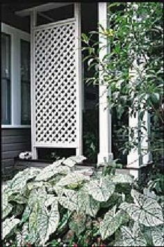 How to Install a Lattice Privacy Screen – Method 3 Moldings Here is a great guide for installing a Lattice Privacy Screen. This method allows for attaching a lattice screen using moldings. Patio Privacy Screen, Privacy Screen Outdoor, Backyard Privacy, Front Yard Landscaping, Privacy Screens, Pergola Patio, Pergola Shade, Backyard Retreat, Privacy Landscaping