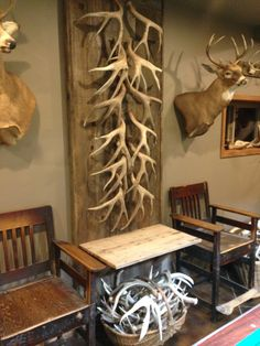 Shed Antler Display Many Ways To Hang Deer Hunting In