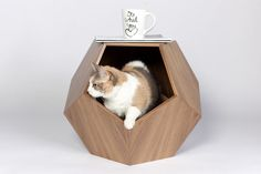 11 Cat Caves That Prove Cat Beds Can Be Stylish // This wooden geometric cat bed can be used as small side table in your living room and keeps your cat near by while you watch TV.