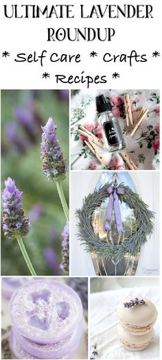 ultimate lavender crafts roundup - 35 self-care DIYs, crafts, recipes, and so much more! Diy Crafts For Adults, Adult Crafts, Easy Diy Crafts, Diy Craft Projects, Craft Tutorials, Crafts To Make, Fun Crafts, How To Propagate Lavender, Lavender Crafts