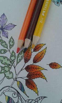.Secret Garden coloring leaves