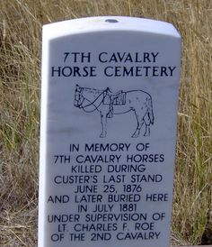 I love that someone thought about the horses! Great idea. 7th cavalry horse cemetery