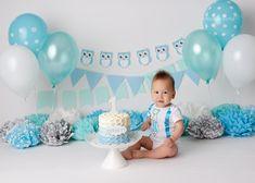mint-blue-white-owl-cake-smash-baby-boy Baby Boy Birthday Themes, Owl Cake Birthday, Carnival Cakes, Carnival Themes, Polka Dot Balloons, Cake Smash Photography, Cake Smash Photos, Cake Pictures, Custom Banners