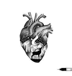 "215 Likes, 7 Comments - Thiago Bianchini (@thiago_bianchini) on Instagram: ""'WILD HEART' ✏"""