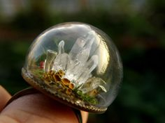 25 Delicados Anillos Que Contienen Mágicas Escenas En Bolas De Cristal