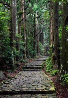 yuikki: Daimon-zaka Slope on Kumano pilgrimage trail(熊野古道、大門坂) by Hisanori Beautiful World, Beautiful Places, Beautiful Sunset, Nature Landscape, Winter Landscape, Forest Path, Nature Aesthetic, Walk In The Woods, Pilgrimage
