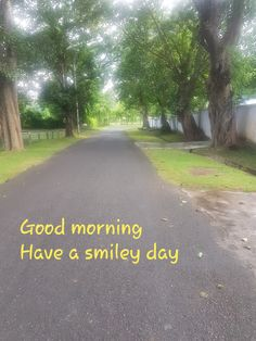 Good Morning, Sidewalk, Country Roads, Day, Bom Dia, Walkway, Buen Dia, Bonjour, Buongiorno