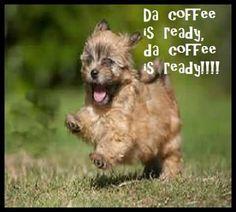 Run to the coffee.