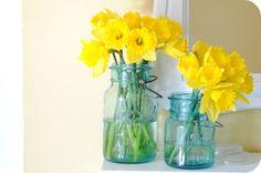 Daffodils and Ball jars!