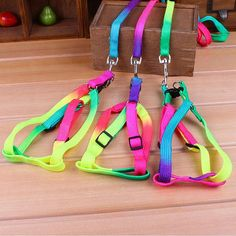 FREE Worldwide SHIPPING!  RP$20.80 $14.80 Rainbow Harness for Cat & Small Dog  Beautiful Bright Rainbow Colored Harness for Cat and Small Dog is ideal for walking your pet in style and comfort.   It is adjustable harness to fit the size of your pet to ensure maximum comfort and great for long duration walk or jog.