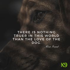 Shout out to all heartwarming paws out there! - Funny Dog Quotes - Shout out to all heartwarming paws out there! The post Shout out to all heartwarming paws out there! appeared first on Gag Dad. Dog Best Friend Quotes, Dog Quotes Love, Dog Quotes Funny, True Quotes, Funny Dogs, Cute Dogs, Best Friends, Quotes On Dogs, A Girl And Her Dog Quotes
