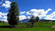 Sonnleiten Dolomiten Residence - Ihre Natur &-Sternstunden im Herbst