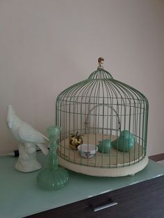 Birds & Cages