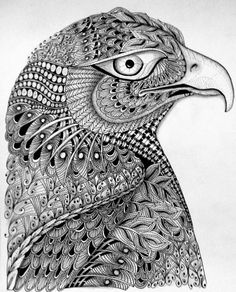 zentangle eagles | 1390937097927.jpg