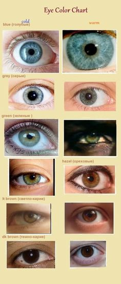 Eye color and pattern of iris