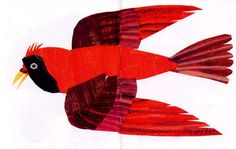 red bird by eric carle