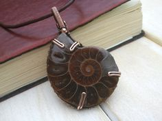Ammonite Fossil Pendant  Wire Wrapped Ammonite by EmmaWyattArt