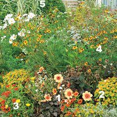 www.rustica.fr - Avoir des massifs toujours fleuris - Massif au soleil