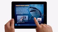 iPad Feature
