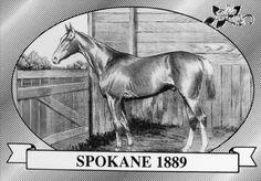 Spokane   Winner of the 15th Kentucky Derby   1889   Jockey: Tom Kiley   8-Horse Field   $4,880 prize