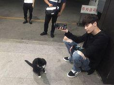 Image de lee jong suk, cat, and ulzzang Lee Jong Suk Cute, Lee Jung Suk, Korean Men, Korean Actors, Korean People, Korean Dramas, Young Male Model, Han Hyo Joo, W Two Worlds