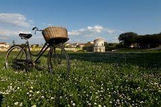 Parco Teodorico. Questo parco circonda il Mausoleo di Teodorico, monumento patrimonio Unesco. #Ravenna