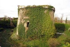 :: Martello Tower number Rye Harbour, near to Rye Harbour, East Sussex, Great Britain by Oast House Archive Rye Harbour, South East England, Fortification, Napoleonic Wars, East Sussex, How To Level Ground, East Coast, Great Britain, Wales