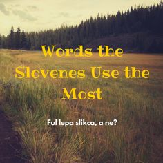 Words the Slovenes Use the Most