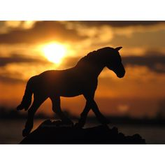 The future is created by what you do today  • Are sunset pictures getting boring? • Also thank you guys soo much for 700 followers!! Hopefully I'll try to do a contest or something for you all • • #breyer#breyers#breyerhorses#breyerphotography#schleich#schleichhorses#schleichphotography#safariLTD#modelhorses
