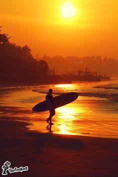 surf & SUP Sri Lanka Sri Lanka Surf, Ocean Sunset, Ocean Life, Have Fun, Surfing, Wanderlust, Waves, Outdoor, Outdoors