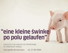 "Check out new work on my @Behance portfolio: ""Eine kleine Swinke - Goethe-Institute campaign"" http://on.be.net/1MGwC9C"