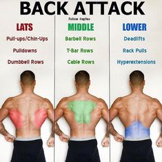 🔥 If tight lats are one of your issues, give these a try for sets of 15 seconds each. Fitness Workouts, Fitness Herausforderungen, Weight Training Workouts, Gym Workout Tips, Biceps Workout, Muscle Fitness, Workout Challenge, Physical Fitness, Fun Workouts