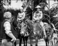 The Rifleman - Old Tony ♫ - Season Episode Episode 168 The Rifleman, Horses, Seasons, Westerns, Animals, Animales, Animaux, Seasons Of The Year, Animais