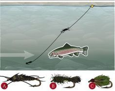 Catch Trout At High And Low Water | Field & Stream