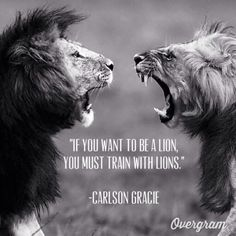 """If You Want To Be A Lion, You Must Train With Lions"" - Carlson Gracie"