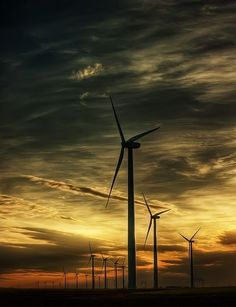 China rushes to harness wind with government help  #China #WindEnergy #ExecutiveSalad http://executivesalad.com/2014/11/03/china-rushes-to-harness-wind-with-government-help/