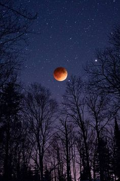 Total Lunar Eclipse by Benjamin Tatrow