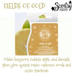 Fields of Gold fragrance #scentsy  #fragrance  #home