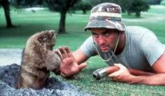 Caddy Shack. Loved this movie and desperately wanted this little creature!