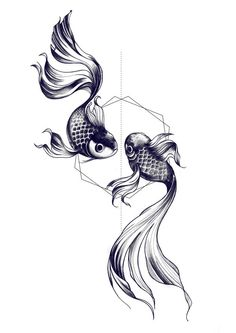 Koi fish. Replace background shape with triangle and move position of fish