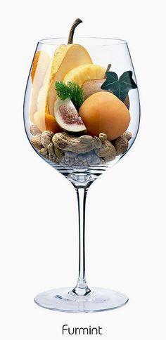 Furmint (white) | Aromas of pineapple, apple, apricot, pear, peanut, dried fig, kumquat, orange peel, ivy, fennel, cardamom, white pepper | Hungary, Slovakia