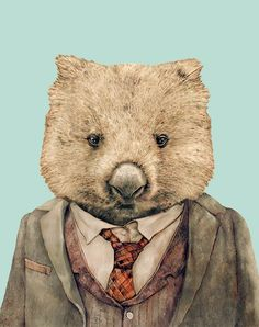 Mr Wombat archival art print - hardtofind.