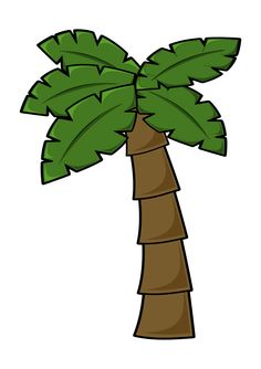 palm tree png image clipart graphics pinterest palm moana and rh pinterest com clip art palm trees with christmas lights clip art palm trees free