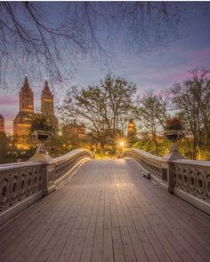 Beautiful twilight capture in Central Park NYC